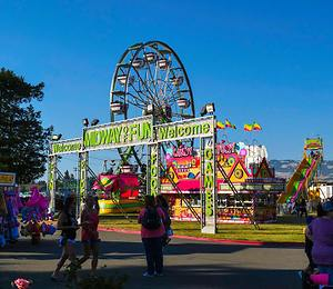 Sonoma Marin Fair 2020.From Butterflies To Ugly Dogs At The Sonoma Marin County